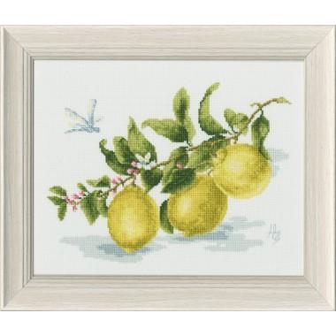 Набор для вышивания Золотое Руно ФС-006 Веточка лимона (по мотивам картины Н. Зубковой)