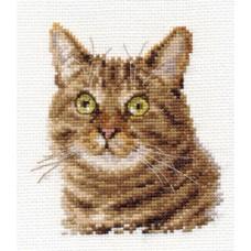 """Набор для вышивки Алиса 0-135 """"Европейский кот"""""""