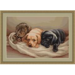 "Набор для вышивания Luca-S B434 ""Три собачки"""