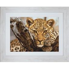"""Набор для вышивки Luca-S G525 """"Леопард"""""""