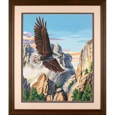 """Набор для рисования Dimensions 91301 """"Парящий орел"""""""