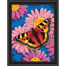 """Набор для рисования Dimensions 91341 """"Цветы и бабочки"""""""