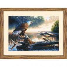"Набор для рисования Dimensions 91379 ""Орел-охотник"""