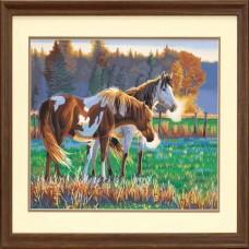"Набор для рисования Dimensions 91417 ""Лошади на пастбище"""