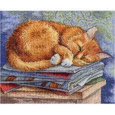 Набор для вышивания М.П.Cтудия НВ-595 Кот ученый