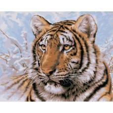 "Набор для рисования Plaid 21674 ""Сибирский тигр"""