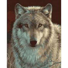 """Набор для рисования Plaid 21678 """"Серый волк"""""""