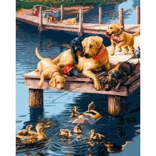 """Набор для рисования Plaid 21685 """"Утки и собаки"""""""