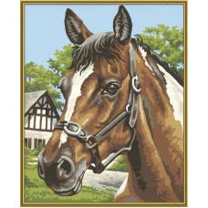 """Набор для рисования красками Schipper 0381 """"Лошадь"""""""