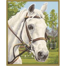 """Набор для рисования красками Schipper 0394 """"Белая лошадь"""""""