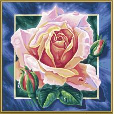 "Набор для рисования красками Schipper 0409 ""Розовая роза"""
