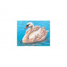 Канва с рисунком Collection D'Art CDA 3094