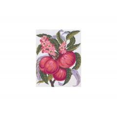 Канва с рисунком Collection D'Art CDA 3160