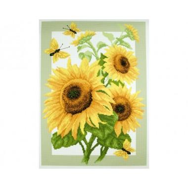 "Канва с рисунком Collection D'Art Аида PA0503 ""Sunflowers"""