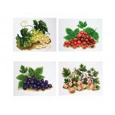 """Канва с рисунком Collection D'Art Аида PA1373 """"Berries"""""""