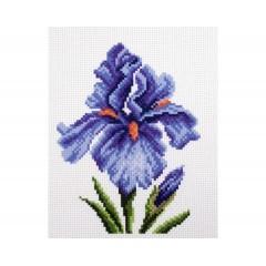 "Канва с рисунком Collection D'Art Аида PA1442 ""Irises"""