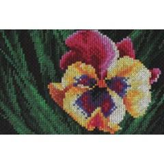 Набор для вышивания Panna Ц-0410 Яркий цветок